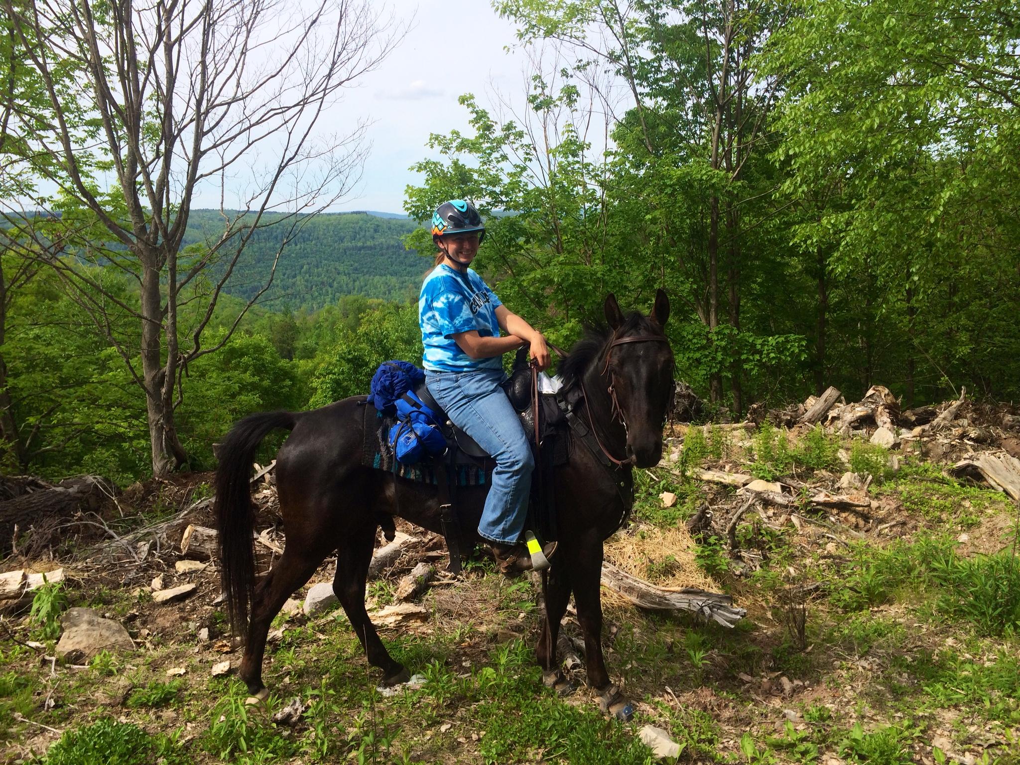 wonderful pony ride